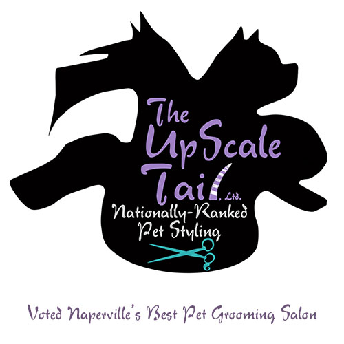 The UpScale Tail Pet Grooming Salon in Naperville, IL Award Winning Dog Groomers and Cat Groomers in Naperville, IL